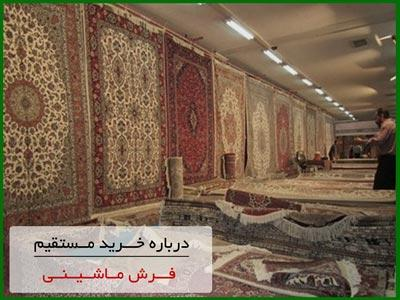 direct-buy-carpet-machine-kashan.jpg